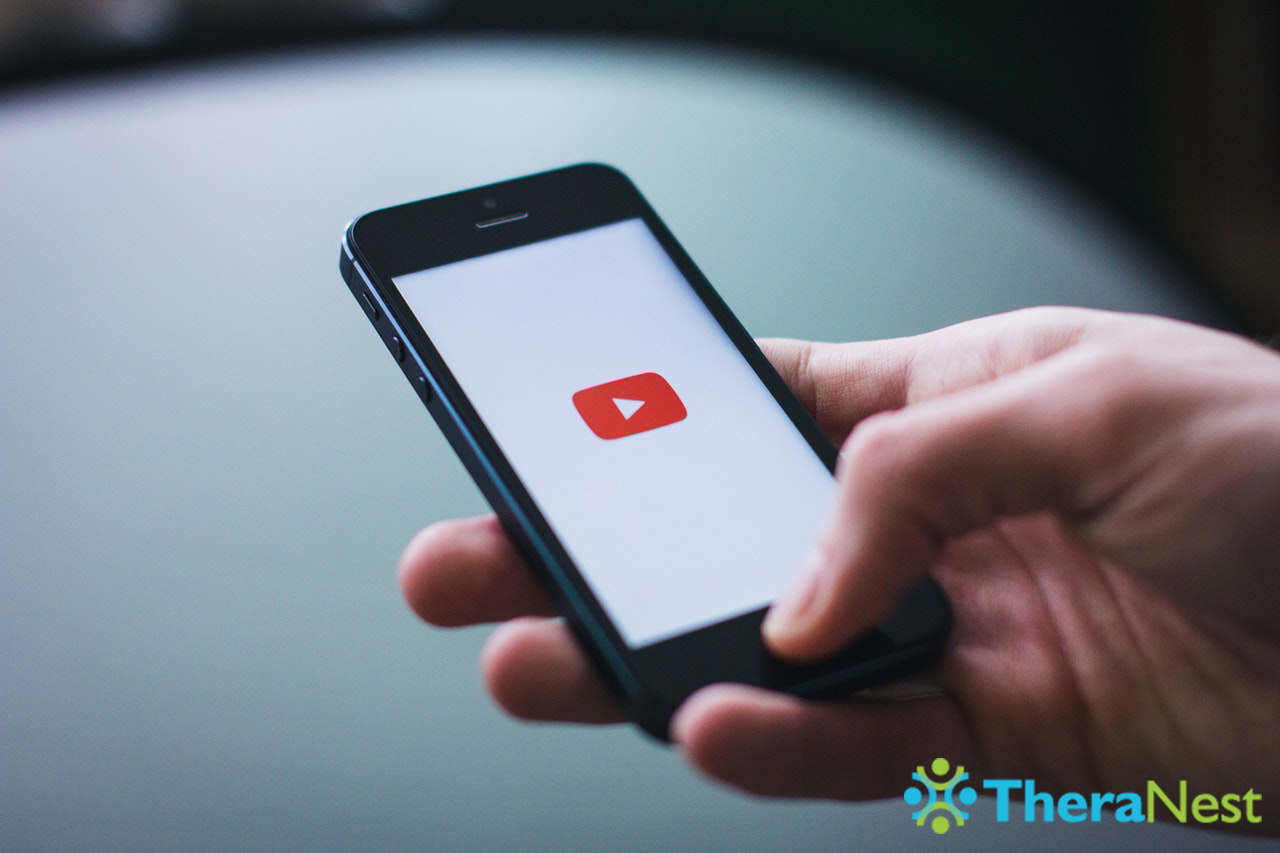 YouTube Screen Image - TheraNest Blog