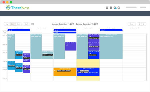 Screenshot of calendar in TheraNest
